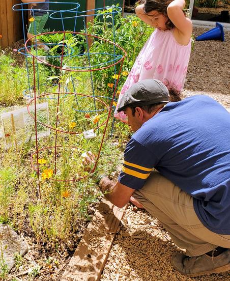The Efshar Project-Garden